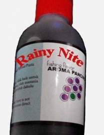rainy-nite